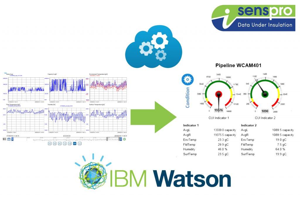 Data analysis leak detection and corrosion under insulation sensor system