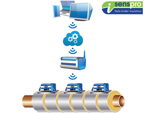 leak detection and corrosion under insulation sensor system